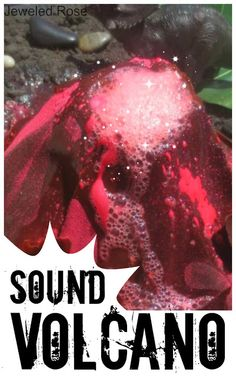 How to make a SOUND volcano from Growing a Jeweled Rose-  What kid wouldn't want to make a volcano with pop and fizzle sound effects as it erupts and bubbles?  Way too fun!