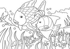 rainbow fish outline full page fish color page