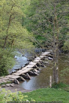Tarr Steps Clapper Bridge across the... (C) Matthew Bristow :: Geograph Britain and Ireland