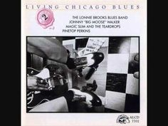 Living Chicago Blues Vol. II - Stranded On The Highway - Magic Slim And the Teardrops