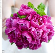 Google Image Result for http://media.theknot.com/ImageStage/Objects/0003/0048729/large_image.jpg