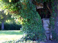 Secret Garden by April Kitcho-Lucero on Etsy