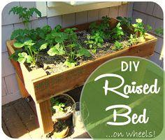 Nine Red: DIY Simple Raised Bed.... on wheels!