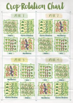 Crop Rotation Chart Anna Langbein blog