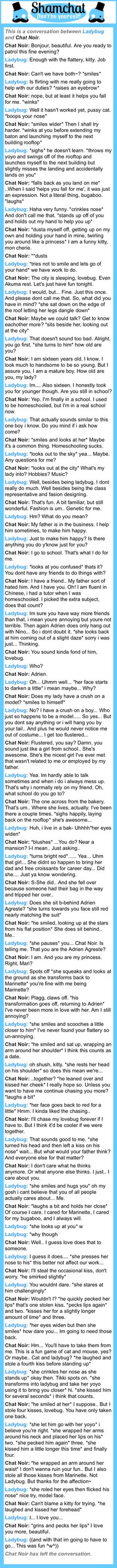 A conversation between Chat Noir and Ladybug