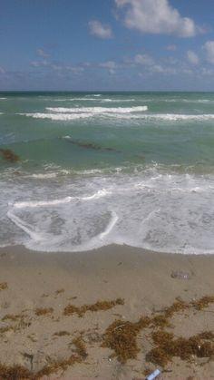 #ocean#FL