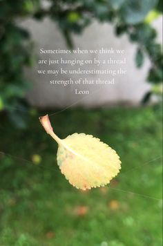 Sometimes we may be stronger than we think