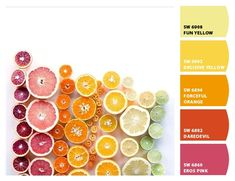 #Paint colors from #ChipIt! by #SherwinWilliams #letschipit Citrus inspired palette, fiesta, fiesty, fiery, fun, punchy, fruity, fruit punch scheme, teen girl, bachelorette party, hot, summer, bright, passionate, juicy, grapefruit, orange, blood orange, passion fruit, lemon, lime