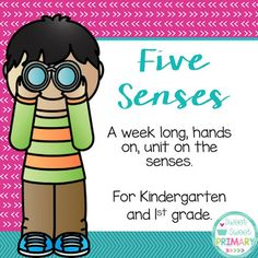 five senses science / STEM / STEAM unit for kindergarten, first grade, and second grade First Grade, Second Grade, Kindergarten Science Projects, Data Sheets, Task Cards, Lesson Plans, Books To Read, The Unit, Teaching