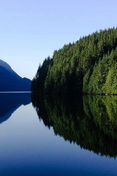 Indian Arm Provincial Park, Greater Vancouver, BC, Canada | Field & Forest