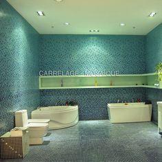 Mosaique En Verre Degrade Du Sol Au Plafond Modele VITA Photo Salle De Bain Carrelage