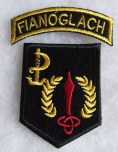 IRISH DEFENCE FORCE SPECIAL FORCES RANGER WING AIRBORNE ' FIANOGLACH ' ARM PATCH