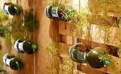 Vaso de garrafa PET: 65 ideias e passo a passo para uma decoração sustentável Home Decoracion, Wine Rack, Plants, Diy, Bottle Vase, Bathroom Crafts, Hanging Baskets, Cat Decor, Modern Door Design