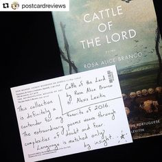 "@postcardreviews recommends CATTLE OF THE LORD by Rosa Alice Branco translated by Alexis Levitin: ""The extraordinary poems weave through complexities of doubt and fear.""  What's your recommended read? #poetry #translation #readwomen #portuguese #CattleOfTheLord #rosaalicebranco #alexislevitin #bookstagram  #Repost @postcardreviews with @repostapp  Cattle of the Lord by Rosa Alice Branco tr. Alexis Levitin (@milkweed_books) #poetry #books"