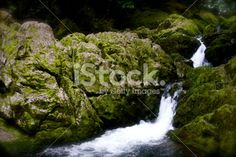 Waterfall & Green Mossy Rocks Royalty Free Stock Photo