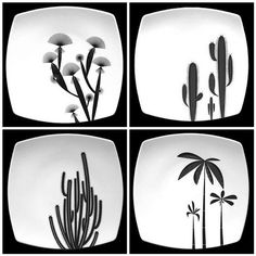 Baja Plate Set by Christopher Jagmin
