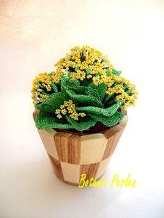 Plante en perles Crassulacée grandeur nature + cache-pot en bois naturel : Accessoires de maison par botanic-perles