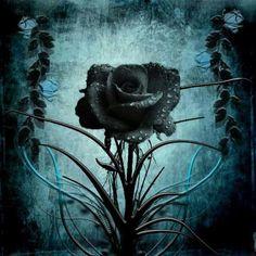 creepy rose wallpaper - photo #6