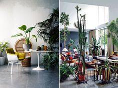 Groene inspiratie: De mooiste tuinen binnenshuis