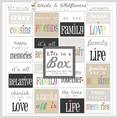 Life In A Box
