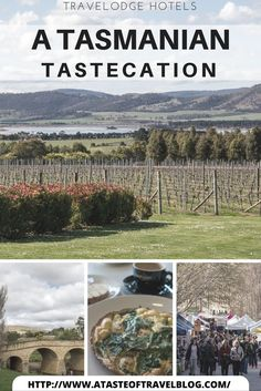 Tasmania has always been known as the apple isle but today it is their superb #food and wine that is bringing people to the island.