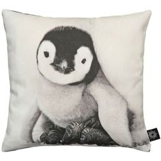 By Nord Baby Penguin Cushion ($50) ❤ liked on Polyvore featuring home, home decor, throw pillows, pillows, decor, fillers, accessories, backgrounds, graphic throw pillows and feather throw pillows