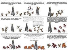 people are like monkeys
