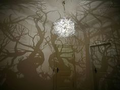 A chandelier that creates shadows that turn a room into a forest.