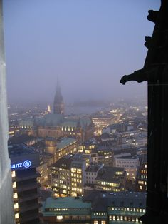 A misty winter's night in Hamburg; looking out at the Rathaus and the Inner Alster.