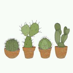 cactus art print | Tumblr