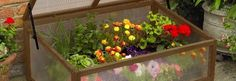 For easy crop protection use one of our greenhouses, cold frames, grow tunnels…