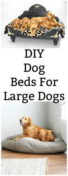 Dog Accessories Bow Ties DIY Dog Beds for Large Dogs - Chemistry Cachet.Dog Accessories Bow Ties DIY Dog Beds for Large Dogs - Chemistry Cachet Diy Pet, Diy Dog Bed, Homemade Dog Beds For Large Dogs, Large Dog Beds, Bed For Dogs, Big Dogs, Dog Furniture, Steel Furniture, Furniture Online