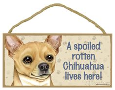 A Spoiled Rotten Chihuahua Lives Here Wood Sign