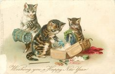 WISHING YOU A HAPPY NEW YEAR  three personised cats, one caries blanket roll, others take things out of suitcase