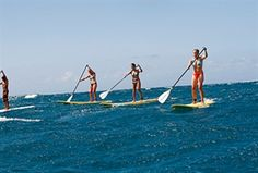 SUP (stand-up paddle) routes in Estepona on the Costa del Sol, Spain