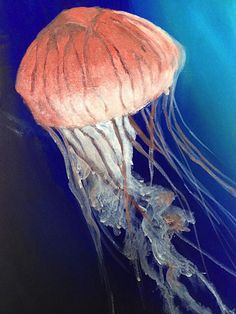 Jellyfish (acrylic) by Charmaine Lim