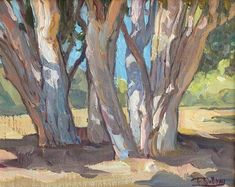 "American Legacy Fine Arts presents ""Eucalyptus Cluster"" a painting by Tim Solliday."
