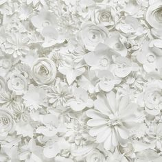 Design and Paper Rainbow Aesthetic, White Aesthetic, Paper Flower Wall, Paper Flowers, Textured Wallpaper, Textured Background, Flower Graphic Design, Paper Fashion, White Texture