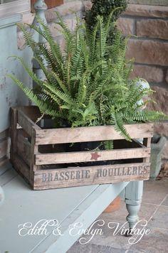 Vintage French Beer Crate, Wood Box, Advertising. $75.00, via Etsy.