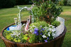 Миниатюрните градинки са много добър начин за декорация на терасата или двора. Те са изящен микс между моделирането и градинарството. Нужни са някакви познания и от двете, ако искате да изградите красива мини градинка.