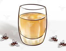 Θα πεθάνουν όλες οι μύγες στο σπίτι σας: Βάλτε ελαιόλαδο με... - DECO & ΣΠΙΤΙΑ - Youweekly Lower Back Pain Relief, Citronella Oil, Cellulite Remedies, Sinus Infection, Abdominal Fat, Best Oils, Teeth Whitening, Metabolism, Home Remedies