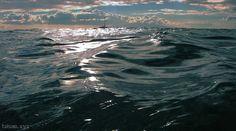 Tại sao gọi là biển đen?
