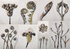 les petites têtes de l'art: Les fleurs de Karl Blossfeldt joliment redessinées...