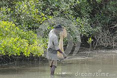 African fisherman working at the river in Serrekunda in Gambia…