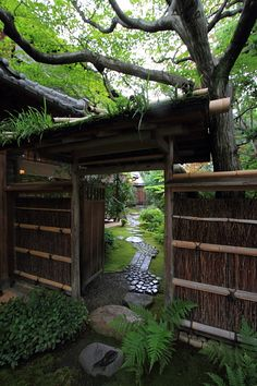Teahouse in Kyoto, Japan
