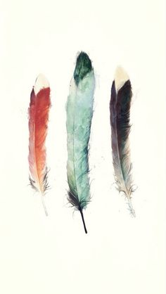Download Three Feathers iPhone 5 Wallpaper