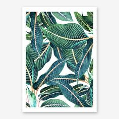 Wall Art - Framed Prints and Posters by Fy!