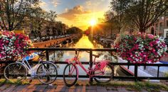 Things you Must Know Before you Travel to Amsterdam