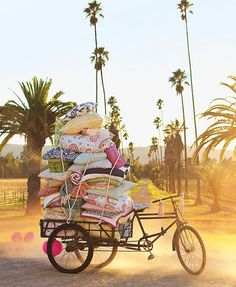 cushions on a bike//love the colors!