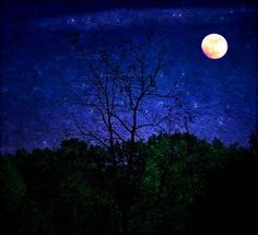 Frost Moon.